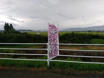 20180826_01
